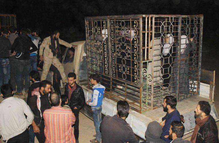 Syriërs in een kooi in Douma, nabij Damascus. De rebellen zouden volgens het Syrisch Observatorium voor de Mensenrechten gevangenen in kooien als menselijk schild gebruiken. Beeld AFP