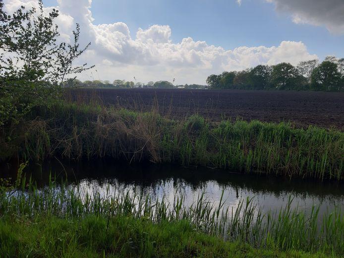 Het akkerland naast het Bels Lijntje en de waterzuivering in Riel moet een zonnepark worden.