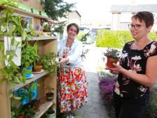 Plantje eruit, plantje erin: Janneke en Ellis beginnen een plantenasiel