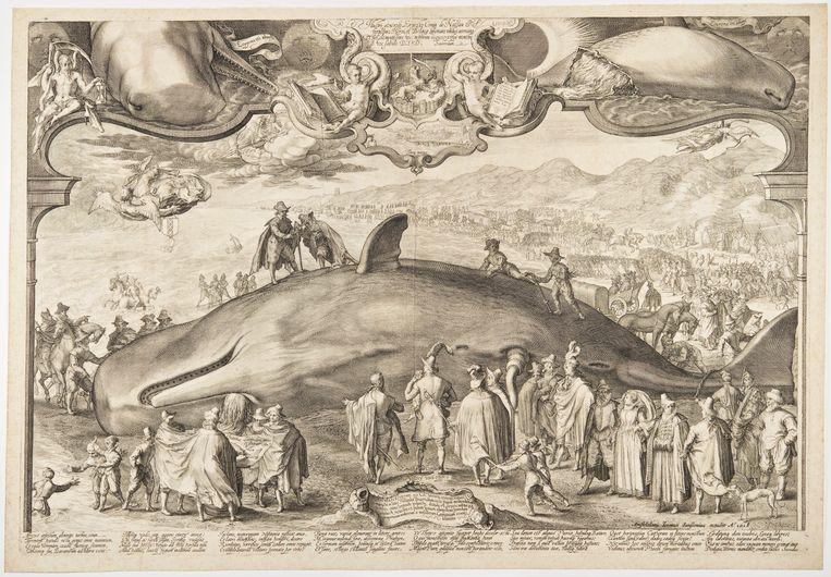Jan Saenredam, 'Gestrande potvis bij Beverwijk', 1602. Beeld , Atlas Van Gijn, Dordrecht