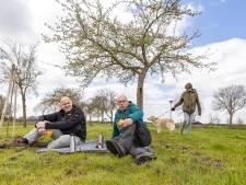 Brigade roept op: houd boomgaard in Hasselt en Genemuiden vrij van hondenpoep!