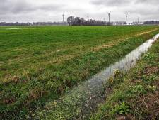 Shell stapt uit project Energiepark A59 bij Oosterhout