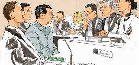 Michael P. wil strafverlaging in hoger beroep. Zit dat erin?