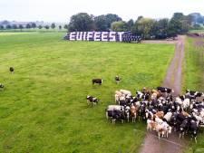 Missverkiezing keert vanwege jubileum terug bij Euifeest in Hasselt
