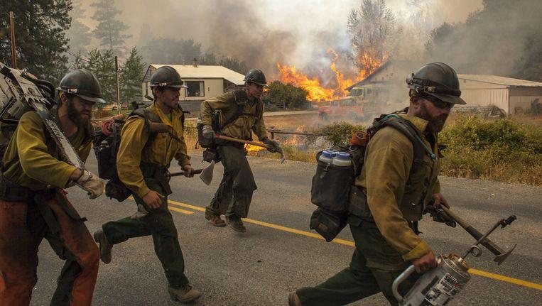 Brandweerlieden op de vlucht voor het vuur in Twisp, Washington. Beeld null