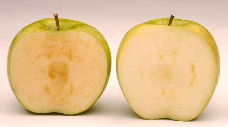 Links een normale Granny Smith na acht uur, rechts een Arctic Apple na dezelfde tijd. Beeld Okanagan Specialty Fruits