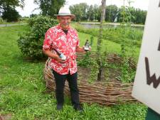 Hophoven schieten als paddenstoelen uit de grond in Altena: 'We willen hét hopeiland van het land worden'