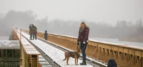 Sneeuwpret is van korte duur in Den Bosch en omgeving
