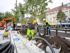 """Brugge ondertekent bomencharter: """"Willen 21.250 bomen bij tegen 2024"""""""