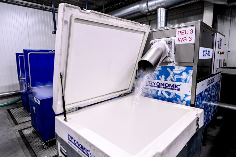 In de fabriek van Alpha BVBA in Gent wordt droogijs geproduceerd, nodig om vaccins te vervoeren.  Beeld BELGA