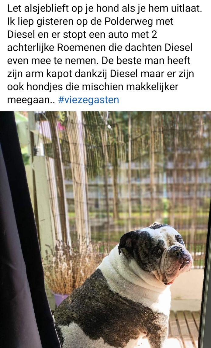 Het bericht op Facebook met Diesel die bijna was gestolen.