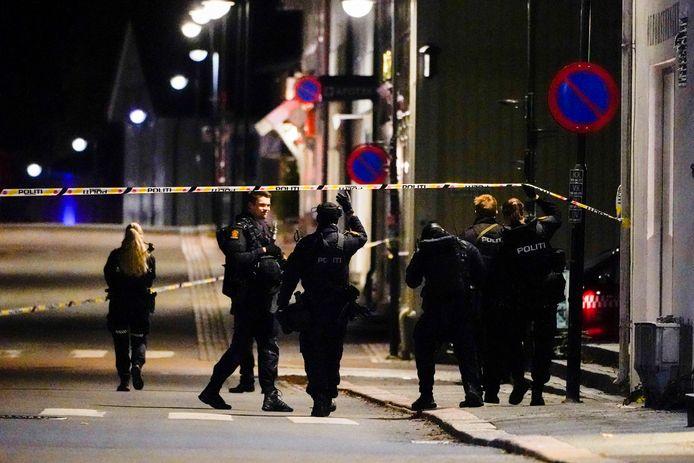 Cinq personnes sont mortes et deux autres ont été blessées dans cette attaque qui a choqué le paisible royaume scandinave.