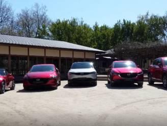 Gezien in Drive: met 5 Mazda's door de Japanse tuinen van Hasselt
