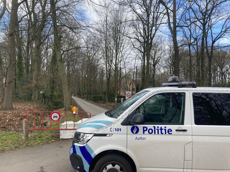 In Aalter kwam een man om het leven door een omgewaaide boom. Beeld Dylan Vermeulen