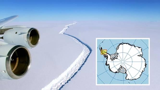 """""""Afgebroken ijsberg zal het hele ecosysteem veranderen"""""""