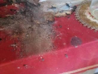 Vandalen stichten brand in kapelletje in Baardegem, alerte buurtbewoner voorkomt erger