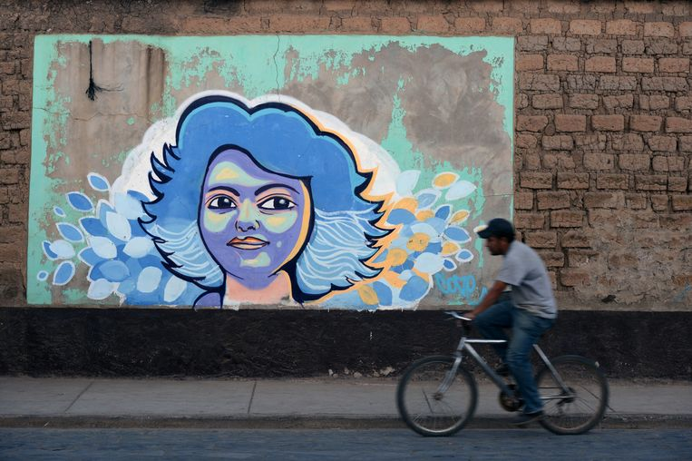 Een muurschildering van Berta Cáceres in La Esperanza, Honduras. De inheemse activiste werd vermoord in deze stad op 3 maart 2016.  Beeld AFP
