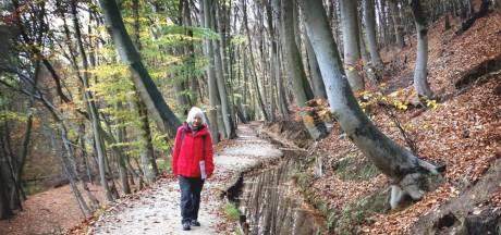 Wandelpaden rond Wageningen en Nijmegen in race voor beste wandelroute van de Benelux