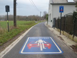 """Gemeente Haaltert plant nog meer fietsstraten: """"Wellicht volgende week al ingericht"""""""