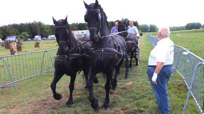 Wayenberg organiseert 47ste Boerenkermis (en dit keer staat er ook een authentiek cowboy-tentenkamp)