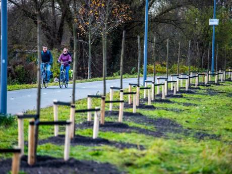 Zuid wenst geen racende brommers op recreatiepad vol herdenkingsbomen