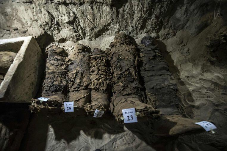 Egyptische archeologen hebben zeventien mummies ontdekt in Toena el-Gebel bij de stad Minya. De waarde van de vondst wordt nogal aangezet. Beeld AFP