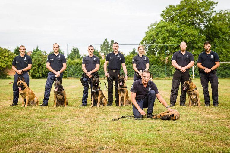 Het hondenteam van de Gentse politie bestaat dit jaar vijf jaar.