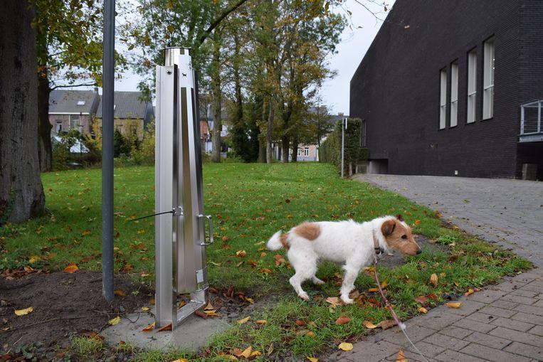 De hondenpoepbuis aan het gemeentehuis.