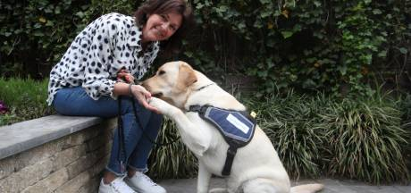 Praia, Eva, Sem... Nicole (52) uit Son voedde al zeven hulphonden op