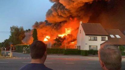 Hevige industriebrand in Dessel: gemeentelijk rampenplan afgekondigd