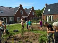 Speciaal woonhofje voor 55-plussers stap dichterbij: 'Jongeren kunnen in onze huizen gaan wonen'