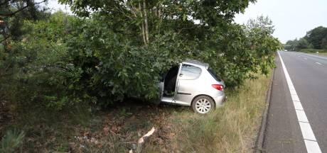 In slaap gevallen bestuurder vliegt uit bocht en belandt in bossen tussen A12 en A50