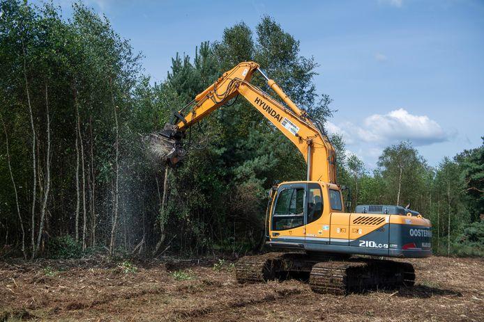 De bosklepel versnippert berken die niet thuishoren in de natuur van het Elsenerveen, in een mum van tijd.