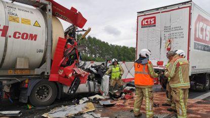 Dodelijk slachtoffer bij kop-staartaanrijding in file na eerder ongeval met vijf vrachtwagens: E17 richting Kortrijk volledig versperd