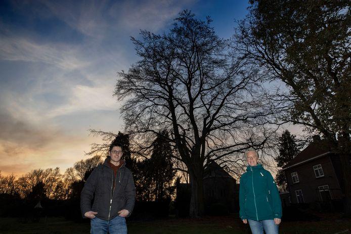 Martijn Aarts en Marjolein van der Voort proberen samen met anderen de grote oude beuk in de pastorietuin van Borkel te redden.