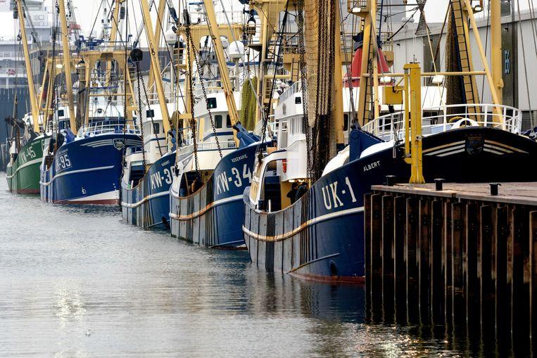 Vissersboten in de haven van IJmuiden. Nederlandse vissers zijn opgelucht dat er een brexitdeal is, maar zijn niet blij met de gesloten deal. Nederlandse vissers mogen de komende jaren een kwart minder vis vangen in Britse wateren.  Beeld ANP