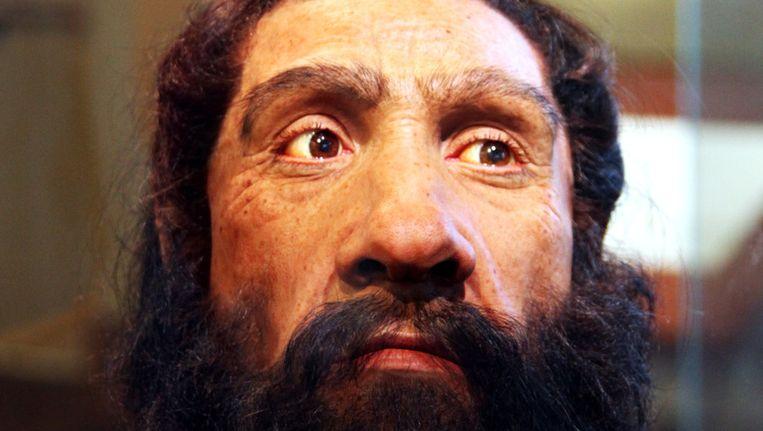 Zo zou de Neanderthaler eruit hebben gezien. Beeld John Gurche, Tim Evanson