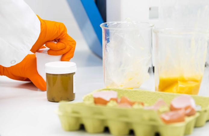 Een medewerker van het laboratorium van de Nederlandse Voedsel- en Warenautoriteit (NVWA) onderzoekt eieren op de aanwezigheid van het gif fipronil.