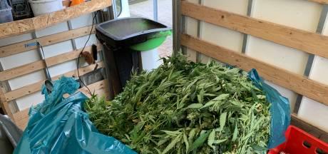Politie vindt 350 hennepplanten in woning in Cuijk