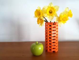 LEGOMASTERS at home: bouw je eigen bloemenvaasje