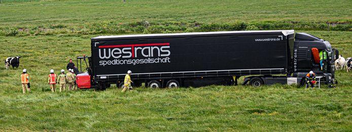 De vrachtwagen ploegde nog enkele tientallen meters door het weiland tussen de koeien.