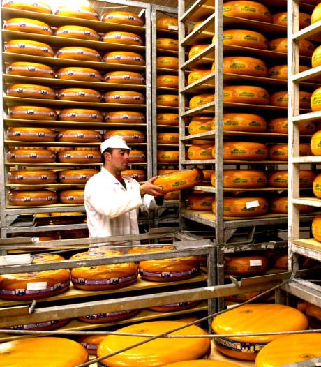 Kaasbedrijven uit Woerden en Bodegraven pakken prestigieuze prijzen in Italië
