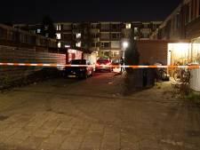 Burenruzie ontaardt in massale vechtpartij in Deventer: acht personen opgepakt