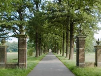 Zelden vertoond: Nederlands spookgezin hield crematie moeder strikt geheim