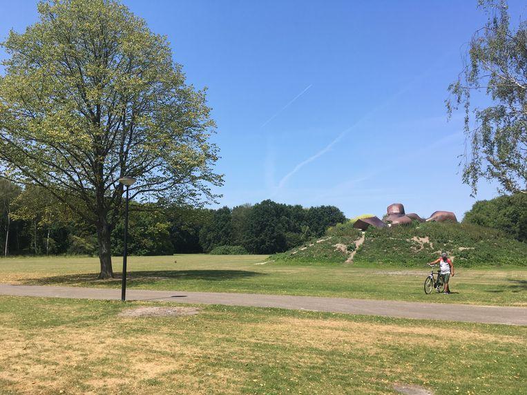 Wessel Couzijn, Groot Landschap, Sloterpark, Amsterdam Beeld  Anna van Leeuwen