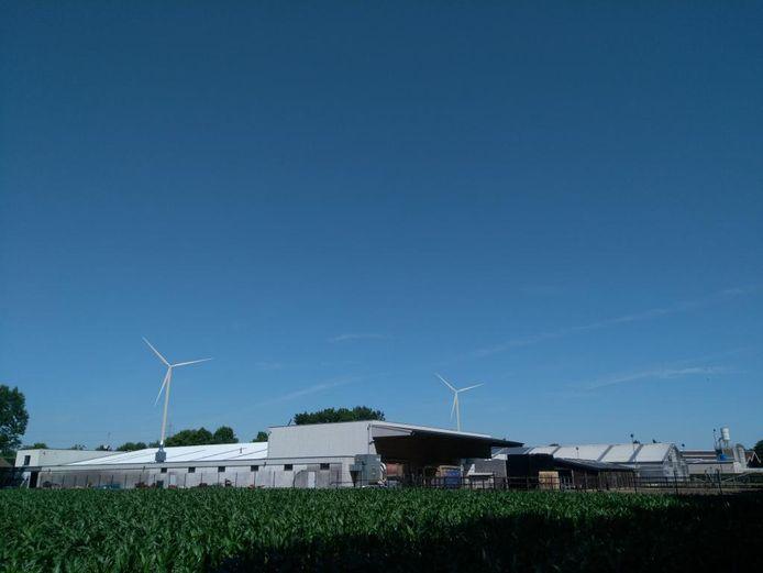 Simulatie windturbines