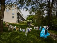 Waslijn met zwerfafval: 'Alles wat we rond laten slingeren waait zo de Maas in'