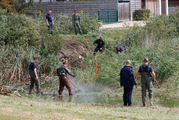 De wapens die gebruikt werden zouden volgens een informant diezelfde avond nog door een Brusselse handlanger gedumpt zijn in Adinkerke. Beeld BELGA