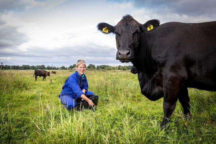 Gemma Nienhuis zorgt voor de koeien in het Enters Reggedal.