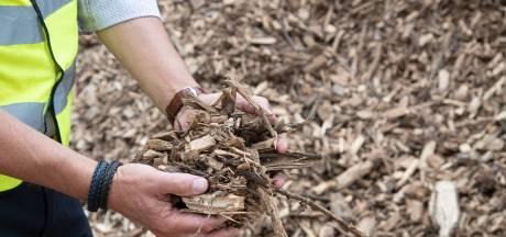 'Fijnstof biomassacentrale Veolia binnen de norm'